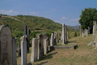 Jewish cemetery in Mád
