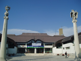 Community Center and Library